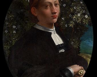 Lucrezia Borgia - Dosso Dossi Battista Dossi - Poster A3 or A4 Matt, Glossy or Art Canvas Paper