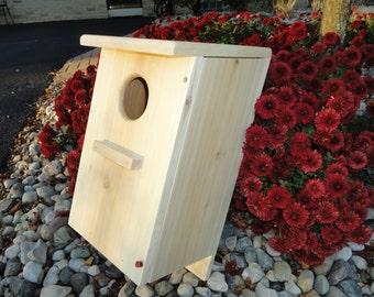 Screech Owl / Kestrel nesting box