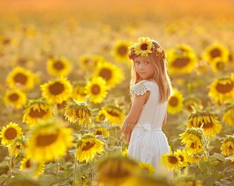 The Sunny Flower Halo