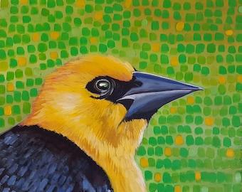 Yellow Headed Black Bird- Matted Print