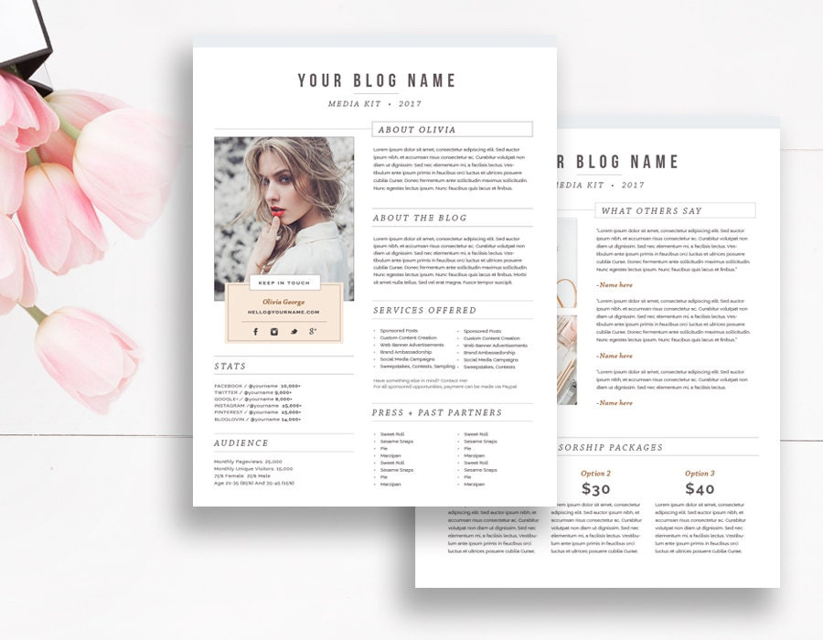 Media kit template 2 page blogger media kit media press kit zoom pronofoot35fo Image collections