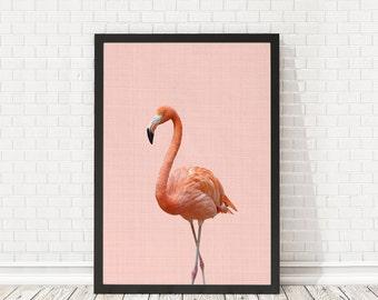 Flamingo Print, Nursery Animal Wall Art, Nursery Animal Decor, Baby room animals, Flamingo art poster, PRINTABLE wall art, Nursery decor art