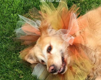 Dog Lioness headdress tutu