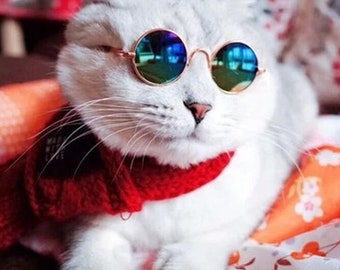 Fashion Small Pet Sunglasses For Dogs and Cats