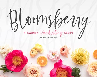 Bloomsberry Typeface & Graphics