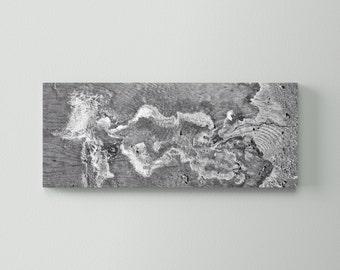 Canvas #1011