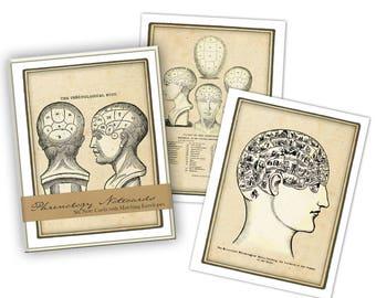 Phrenology Boxed Note Card Set
