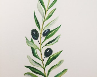 Olive Branch Watercolor