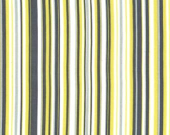 Michael Miller - Play Stripe - Citron