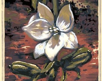 Desert Blossom, 8 block woodcut, signed edition of 30.