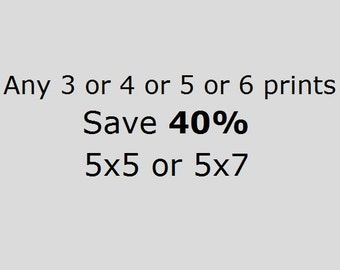DISCOUNT SET Save 40% On 3 or 4 or 5 or 6 5x7 or 5x5 Prints of Your Choice