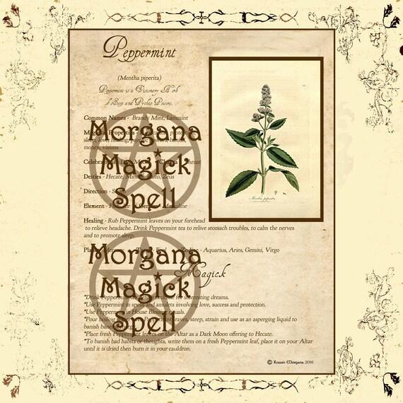 Peppermint Magick Herb