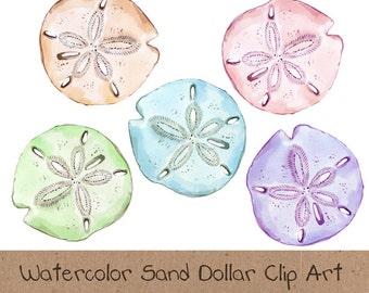 Watercolor Clip Art, Ocean, Sea, Sand Dollar