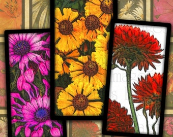 Bright Daisies 1x2 Domino Tiles Digital Collage Sheet-- Instant Download