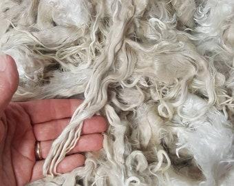 """Suri Alpaca Locks, 9-10"""" Natural White Locks,  Unwashed Locks, Doll Hair, Lock Spinning, Tail Spinning 001"""