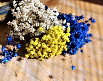 Star flower bundles-Dried flowers-Yellow flowers-Bridesmaid-Corsages-Blue-Natural Ivory