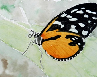Monarch Butterfly - 5.5x8.5 Original Watercolor Painting