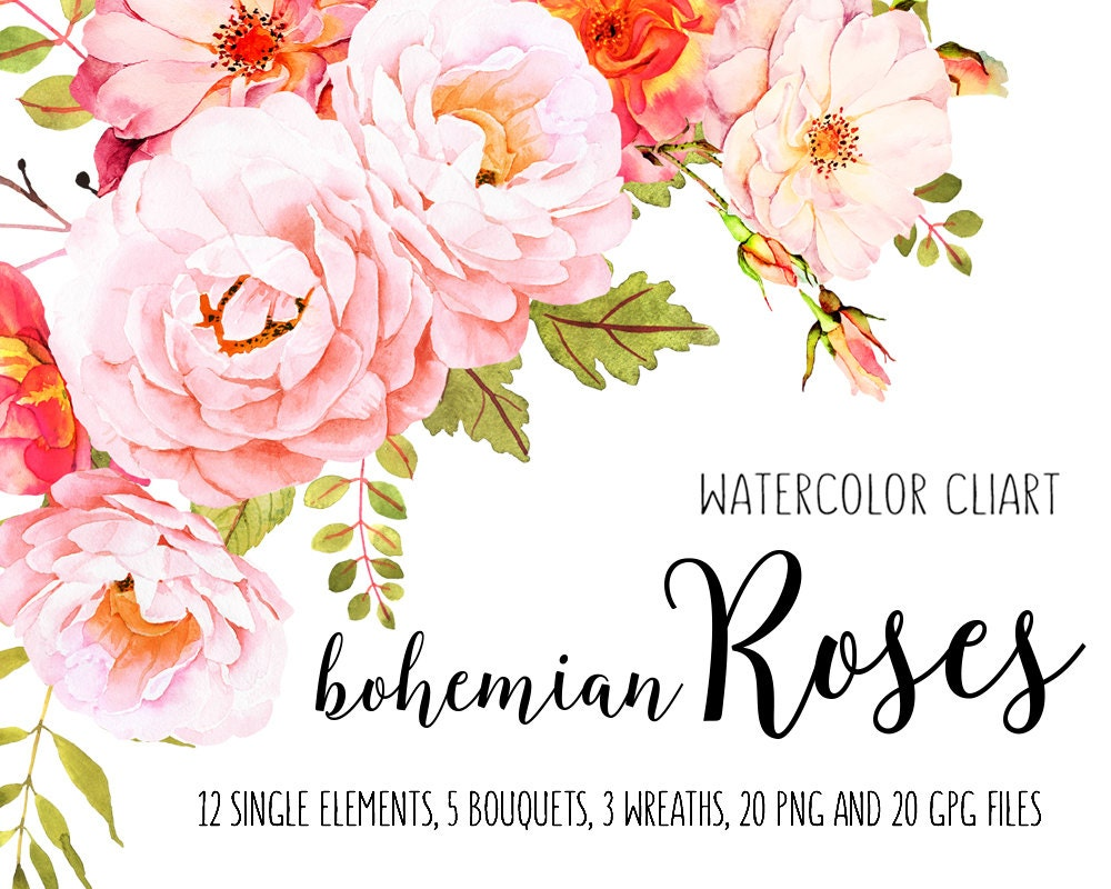 Roses watercolor clip art Flower clipart Watercolor bundle