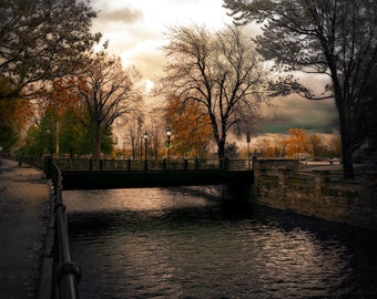 Montreal Art Lachine Canal Nature Fall Photography Trees Lonely Pixel Print - Lights of Lachine