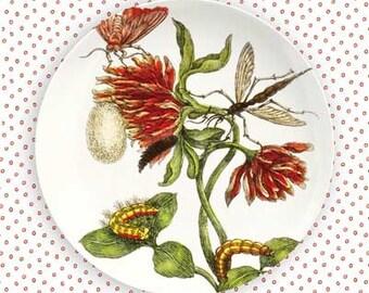 botanical VI dinnerware