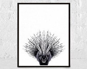 Hedgehog print, porcupine print, nursery animal, woodlands animal, animal art, kids room decor, nursery animal wall art, printable poster