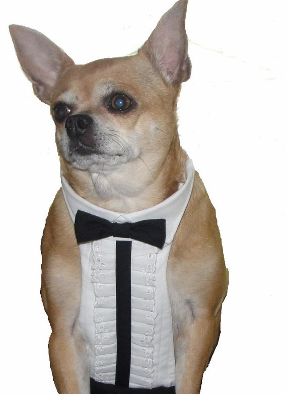 Dog Tuxedo Chihuahua Clothes Dog Wedding Attire Pet Formal