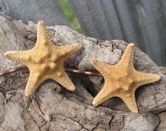 Mermaid Hair Accessories Real Natural Knobby Sea Star Starfish Bobby Pins for Coastal Beach Wardrobe