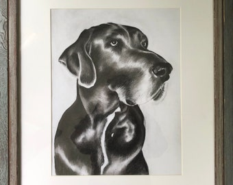 Personalized Pet Drawing