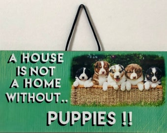 A house is not a home without… Puppies!!