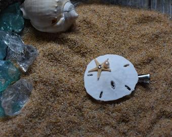 Sand dollar hair clip