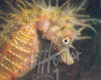 Spiny seahorse painting, Giclee fine art prints, Custom commission painting, special gift for wildlife lovers, pet drawings & portraits