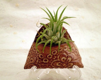 Wall Plant Holder, Indoor Wall Planter, Miniature Ceramic Wall Pocket, Lace Flower, Air Plant Holder, Wall Hanging, Mother's Day Gift