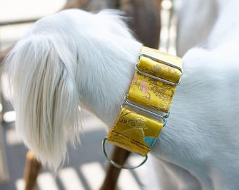 DYNASTY - Special occasions martingale collar, Fancy sighthound collar, Greyhound collar