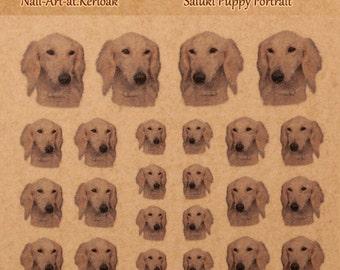 Saluki Nail Art, hond Nail Art Stickers, vingernagel stickers, Saluki pup portret
