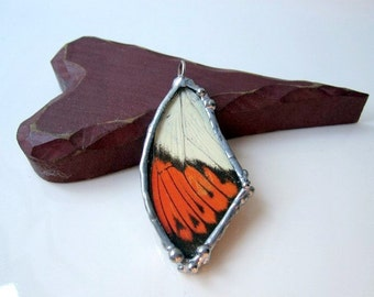 Real Butterfly Wing Jewelry, Great Orange Tip Butterfly