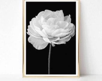 Peony Wall Art, Flower Photography Print, Black and White Peony Print, PRINTABLE Wall Art, Floral Print, Modern Botanical Print Gift for Her