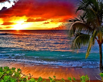 Hawaii Sunset Palm Tree Ocean Waves Water Fine Art Photograph 5x7 8x10 11x14 16x20 24x30