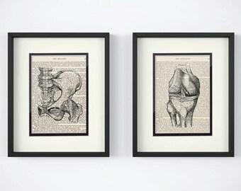 Orthopedic, Set of 2 Prints - Hip, Knee over Vintage Medical Book Pages - Orthopedic Surgeon, Orthopedic Gift, Orthopedic Art, Ortho