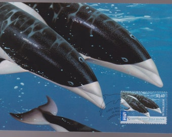 Australia Southern Right Whale Dolphin Maxi Card Philatelic Maxi Card