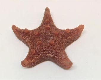 Glass Starfish - red