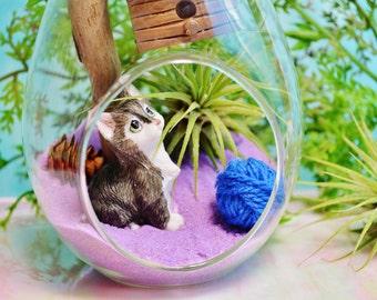 Kitty Terrarium Kit ~ Large Teardrop Air Plant Terrarium  ~ Driftwood ~ Miniature Cat ~ Ball of Yarn ~ Birdhouse ~ Gift for her ~ Meow Meow