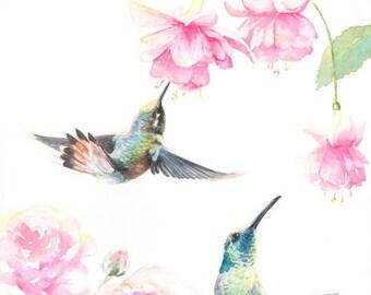 Gift - original hummingbird giclee print