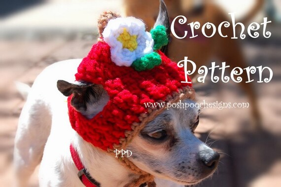 Instant Download Crochet Pattern Apple Dog Hat Small Dog Beanie