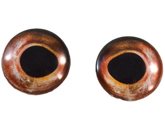 Taxidermy Glass Eyes - 25mm - Glass Eyes - Red Fish