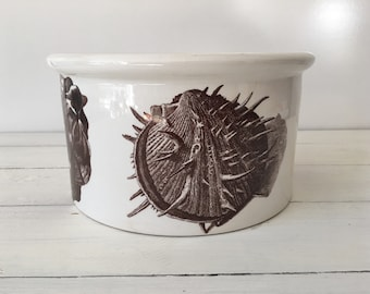 Ironstone bowl, brown transferware, shells, the kingdom of the sea, portmeirion, made in England
