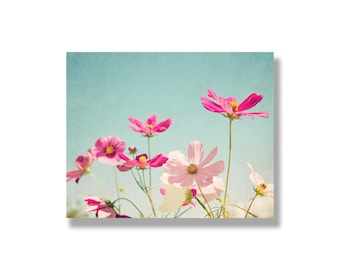 Pink cosmos flower photo canvas, shabby chic decor, nature photography, flower canvas art, cottage chic, floral wall art - The Pink Garden