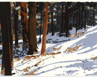 WINTER 2000 Serigraph in 7 colors of Cook Forest, PA