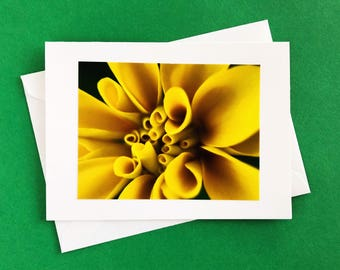 Handmade greeting card - note card - blank card - any occasion card -