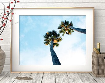 Palm Tree Print, Printable Instant Download, Beach Decor, Wall Art Print, Aqua Blue, Coastal, Clouds, Minimalist Photography, Modern Beach