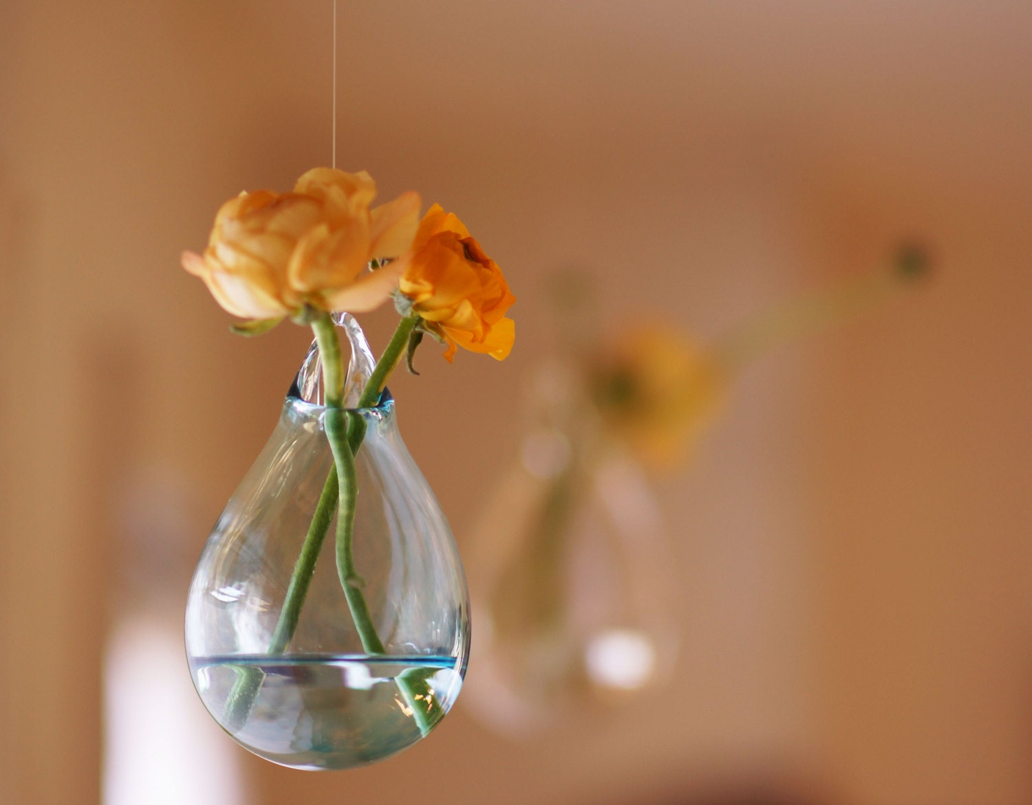 Hanging glass flower vase hand blown glass art transparent zoom reviewsmspy